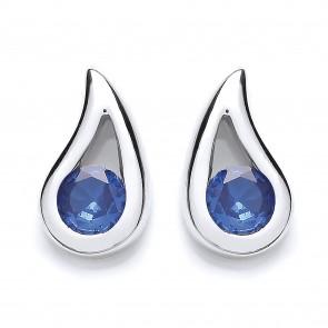 RP Silver Earrings FF Blue Crystal Studs