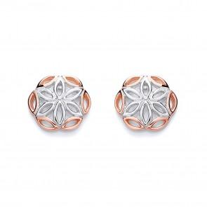 RP/RGP Silver Earrings FF Round Fancy Studs