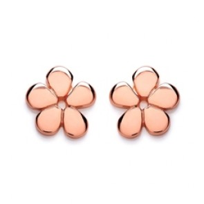 RGP Silver Earrings FF Flower Studs